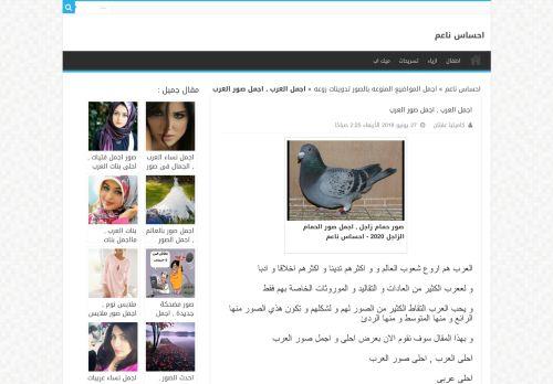 لقطة شاشة لموقع كلمات ناعمة بتاريخ 08/08/2020 بواسطة دليل مواقع الاقرب
